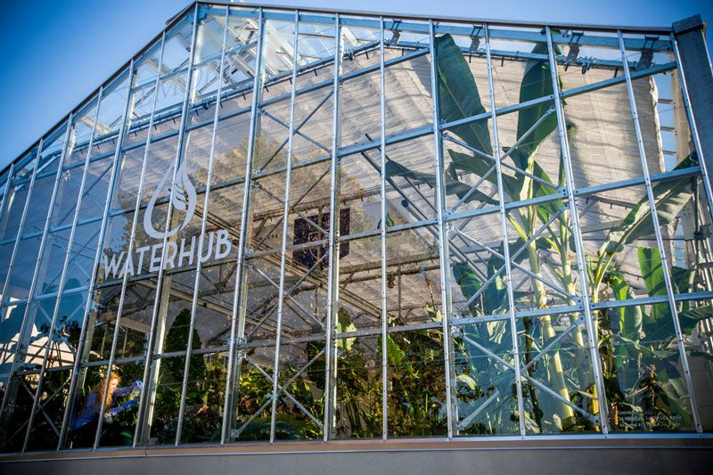An exterior photo shows the greenhouse front of the WaterHub, with plants and a researcher visible within.