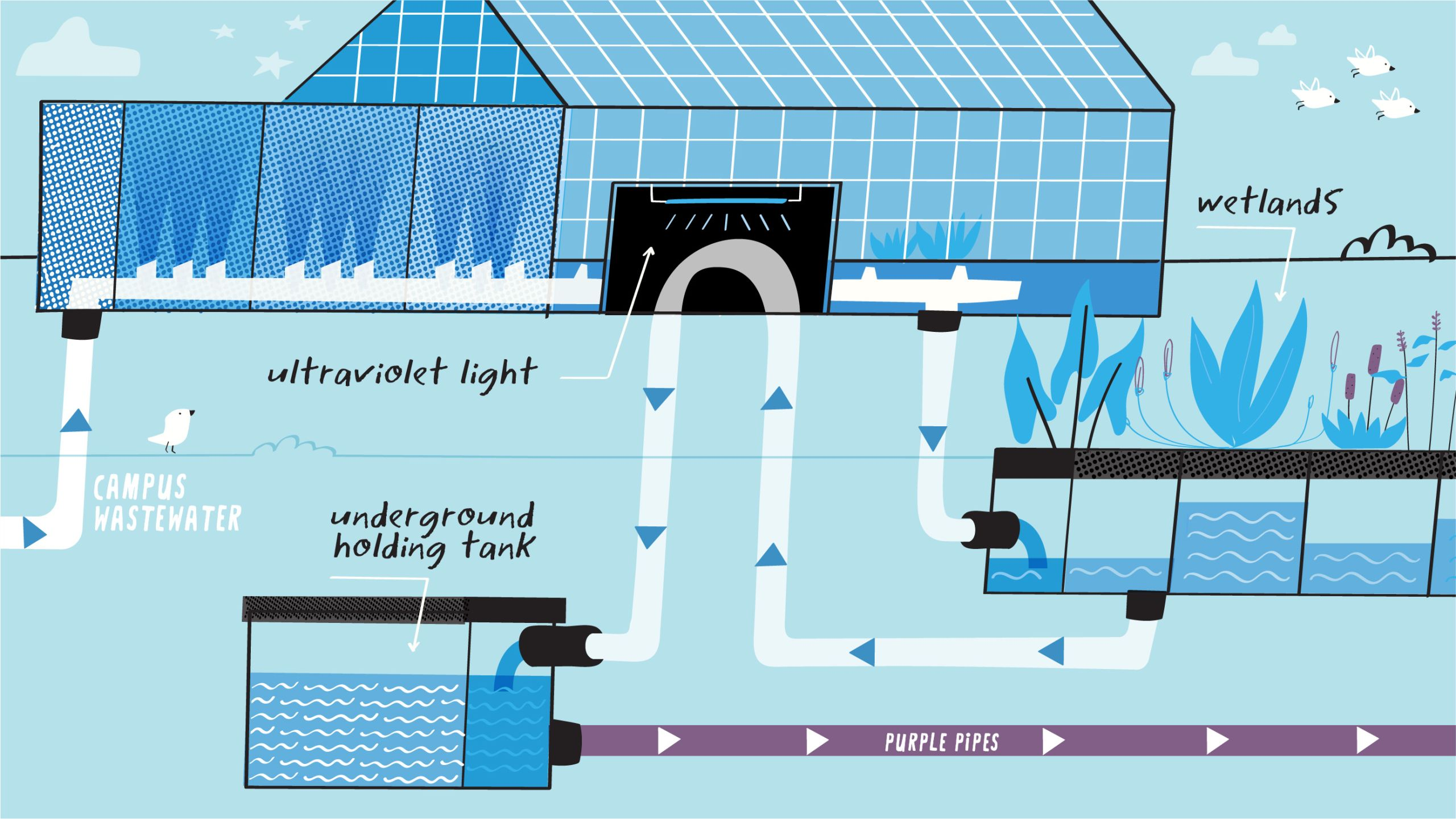 illustration of Emory's WaterHub ultraviolet washing