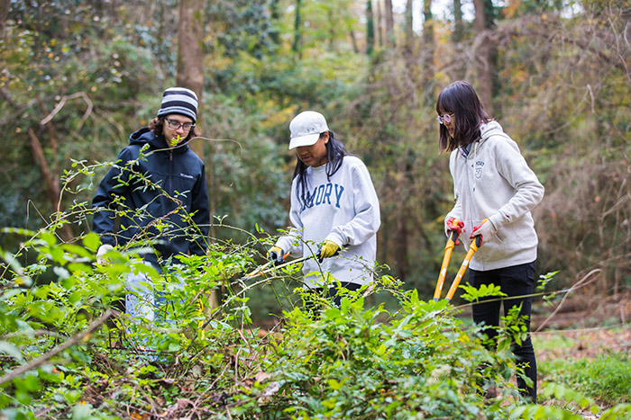 Three students use gardening tools to prune bushes for Emory Cares International Day of Service.