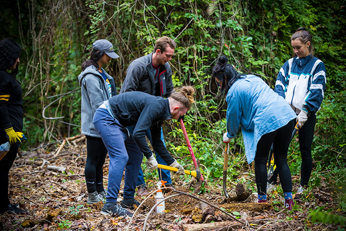 Five students use gardening tools to prune plants and dig up weeds for Emory Cares International Day of Service.