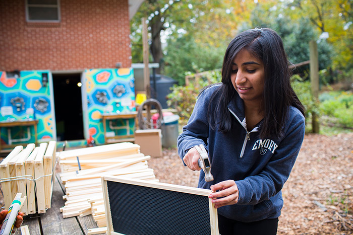 A female student puts together a small screen for separating plants at the community gardens.