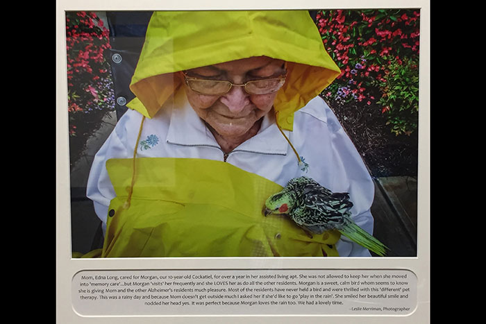 "Photo of Edna Long wearing a yellow hood and apron with her cockatiel, Morgan. The caption on the photo reads, ""Mom, Edna Long, cared for Morgan, our 10-year-old Cockatiel, for over a year in her assisted living apt. She was not allowed to keep her when she moved into 'memory care'...but Morgan 'visits' her frequently and she LOVES her as do all the other residents. Morgan is a sweet, calm bird whom seems to know she is giving Mom and other Alzheimer's residents much pleasure. Most of the residents have never held a bird and were thrilled with this 'different' pet therapy. This was a rainy day and because Mom doesn't get outside much I asked her if she'd like to go 'play in the rain'. She smiled her beautiful smile and nodded her head yes. It was perfect because Morgan loves the rain too. We had a lovely time. - Leslie Merriman, Photographer"""