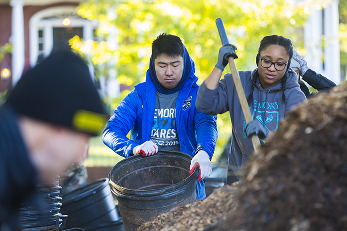 Students work on planting trees