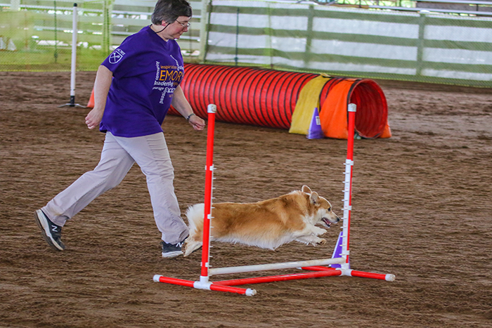 Janey Wilcox, an administrative assistant at Yerkes Field Station, logged her steps by attending agility classes with her dog JoJo.