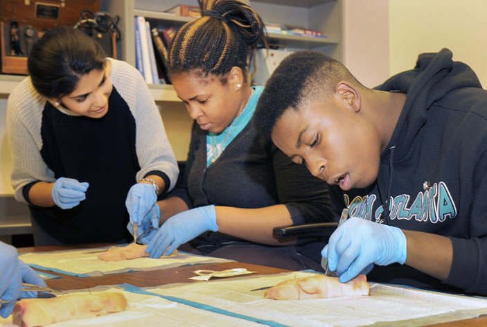 The new initiative, Emory Pipeline Collaborative (EPiC), aims to prepare students from five Atlanta high schools for entry into health professions by increasing academic achievement, improving college readiness, strengthening social support, and broadening student awareness of pathways to health professions.