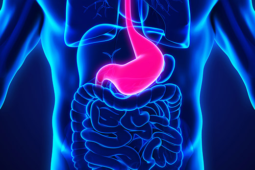 Minimally Invasive Procedure For Gastroparesis Shows Promising Results